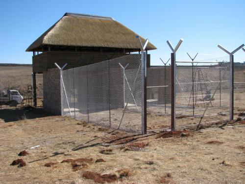 4. Wild fencing