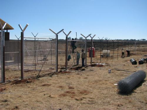 5. Wild fencing